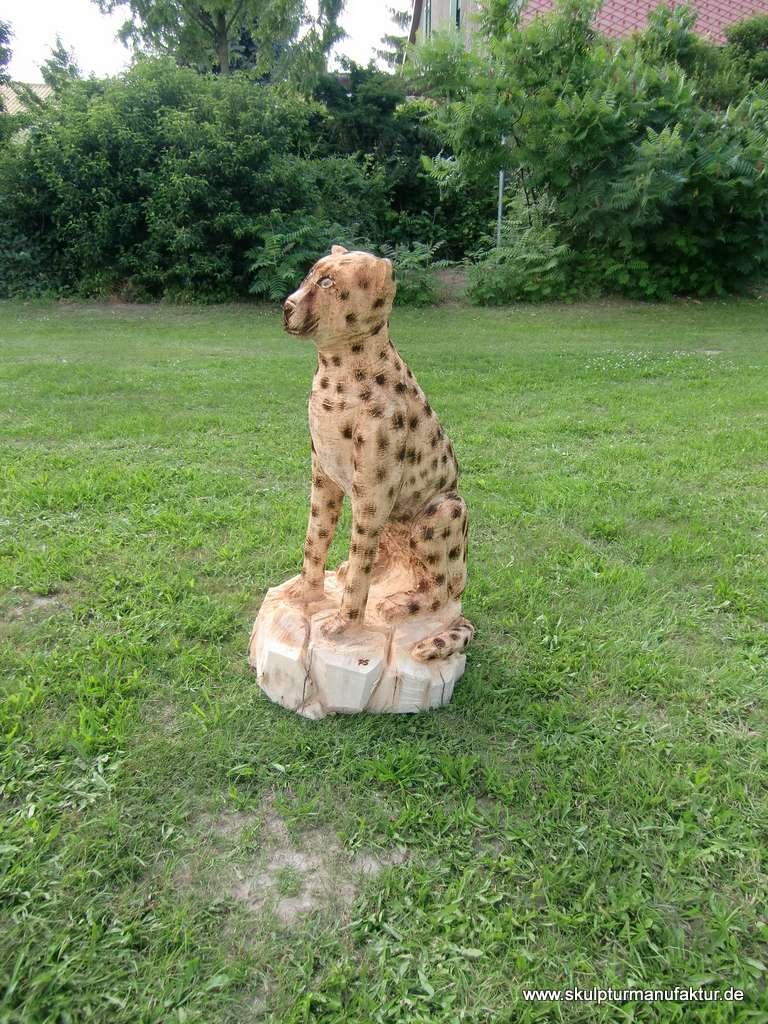 Gepard, Pappel