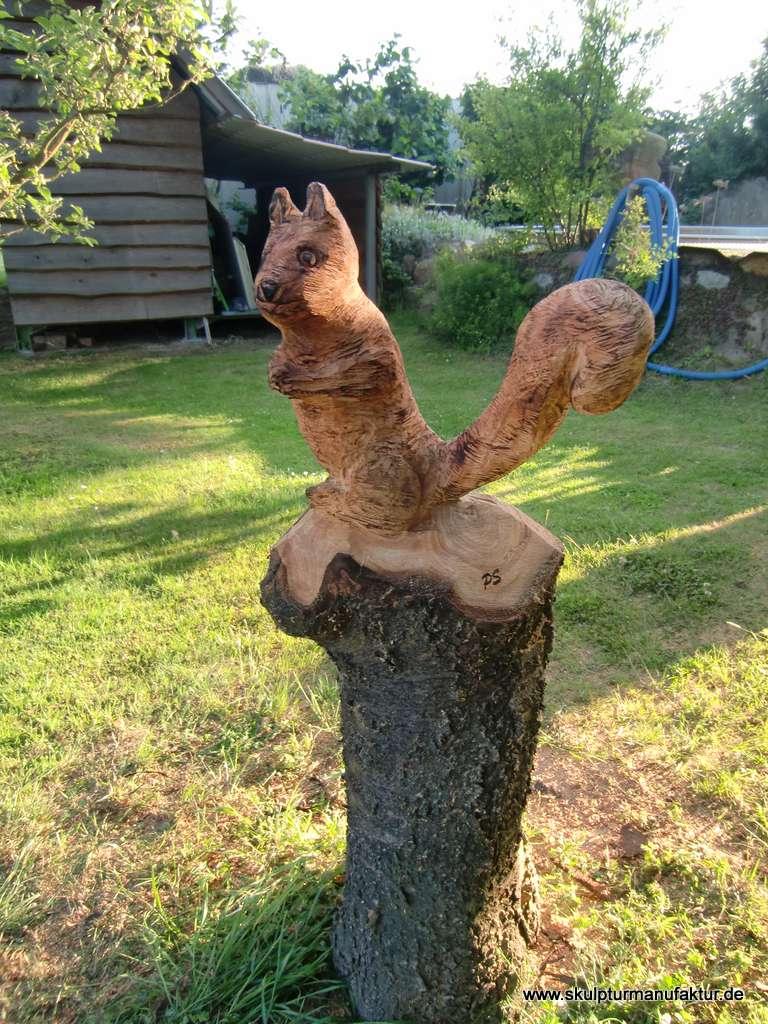 Eichhörnchen, Kirschbaum