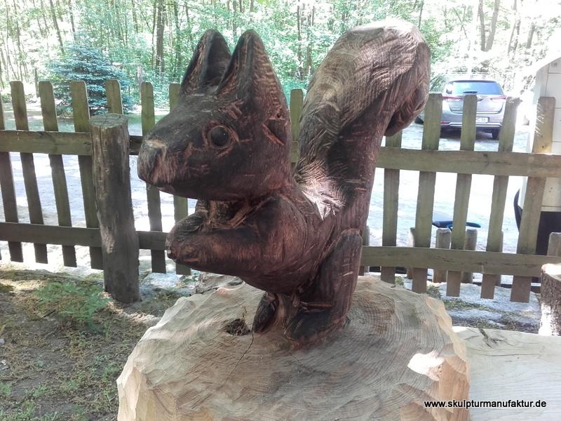 Eichhörnchen, Robinie
